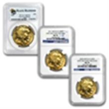 2012 1 oz Gold Buffalo MS-69 PCGS (Black Diamond)