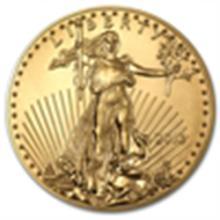 2013 1 oz Gold American Eagle - (Brand New!)