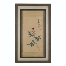 FRAMED CHINESE PAINTING OF BUTTERFLY & CAMELLIA