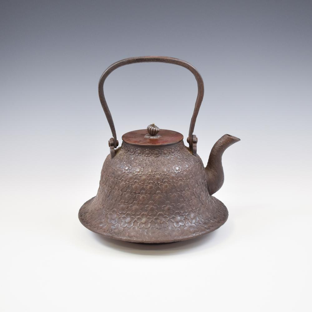 JAPANESE BRONZE TEA POT