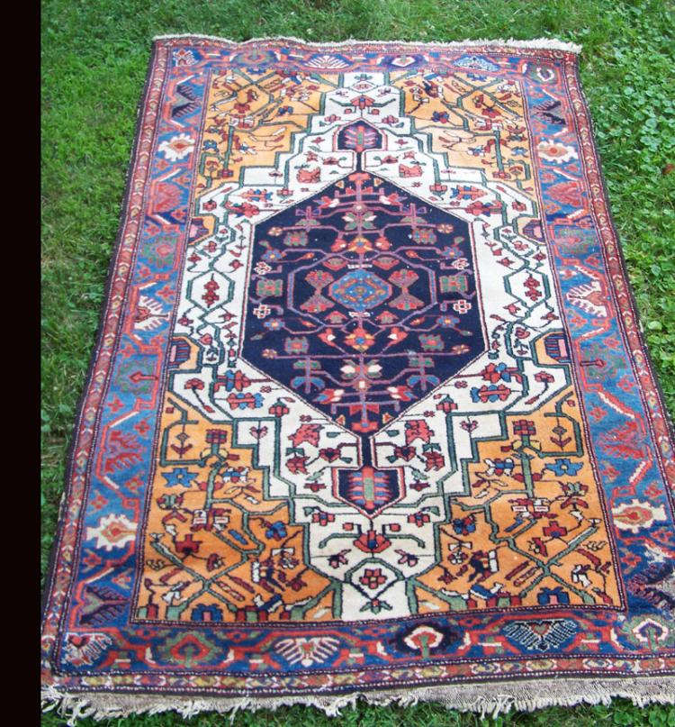 Persian Rugs Wellington: Antique Avakian Brothers Persian Bakhtiari Rug