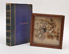 A BOX FRAMED SEAWEED DIORAMA AND AN ALBUM OF SEAWEED SPECIMENS