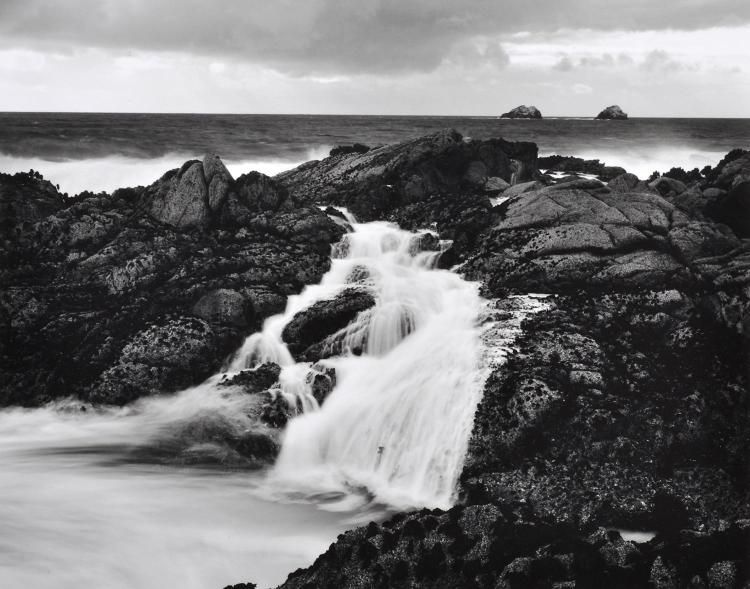 RYUIJIE DOUGLAS (AMERICAN, b. 1950) Pair of works i) Soberanes Point 2001 ii) Plant and Driftwood, Little Sur 1983 silver gelatin print