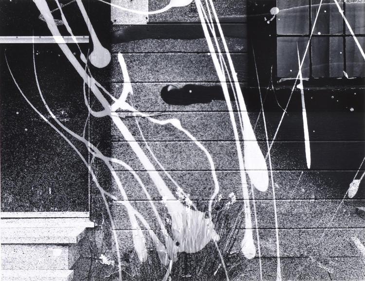 RYUIJIE DOUGLAS (JAPANESE, b. 1950) Pair of Works i) (Abstract) ii) Kelp Detail, Kailoma 1989 silver gelatin print on original mount...