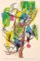 BARBARA BRASH (1925-1998) Twelve-wired Bird of Paradise (Selecidis Melanoleucus) Six-Plumed Bird of Paradise (Parotia Sefilata) 1965...