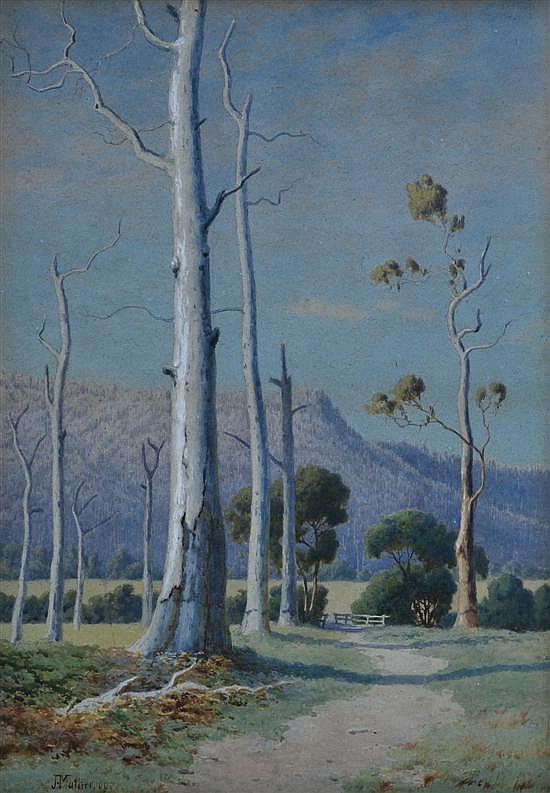 John Mather (1848-1916) Gum Tree in Sunlight 1909 watercolour