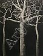 Michael Kempson (born 1961) Golgotha 1991 etching