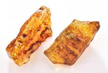 TWO PIECES OF AMBER, TOTALLING APPROXIMATELY 65.20 GRAMS.