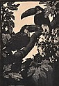 LIONEL LINDSAY (1874-1961) Toucans 1925 wood engraving ed. 100