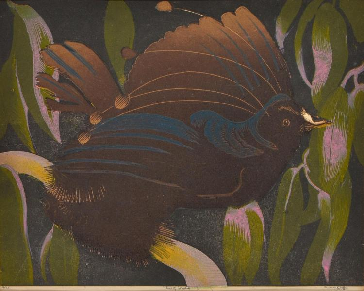 MURRAY GRIFFIN (1903-1992) Bird of Paradise linocut edition 4/25