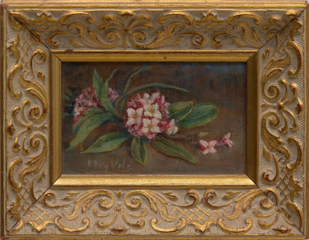 MAY VALE (1862-1945) Daphne oil on card