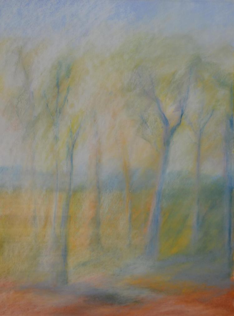 PIET NOEST, BROWN PLAINS, PASTEL ON PAPER, 54 X 74CM