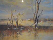 BILL BEAVEN, WETLAND FLOCK, KERANG, LIMITED EDITION PRINT 70/200, 60 X 80 CM