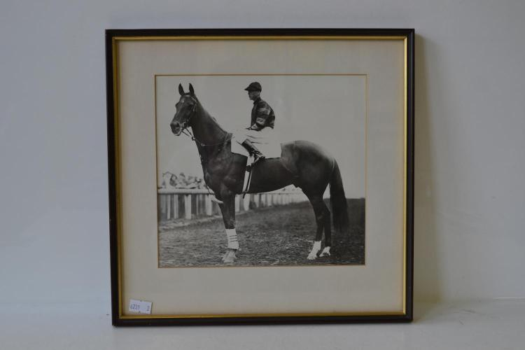 A FRAMED NEWSPAPER SCREEN PRINT FROM AN ORIGINAL PHOTOGRAPH OF PHAR LAP