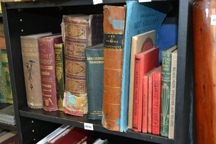 A SHELF OF ASSORTED BOOKS, INCL. THE DANUBE ILLUSTRATED AND PICTORIAL HISTORY OF THE WORLD