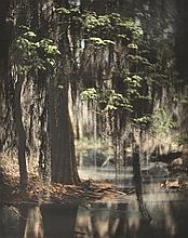 EUGÈNE DELACROIX (AMERICAN) Spring in the Swamp, circa 1890s colour tinted print