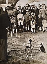 BRASSAI (GYULA HALASZ) (HUNGARIAN-FRENCH, 1899-1984) Performing Dog, 1930s silver gelatin print