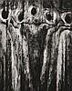 RYUIJIE DOUGLAS (JAPANESE, BORN 1950) Three Apostles silver gelatin print, Ryuijie Douglas, Click for value
