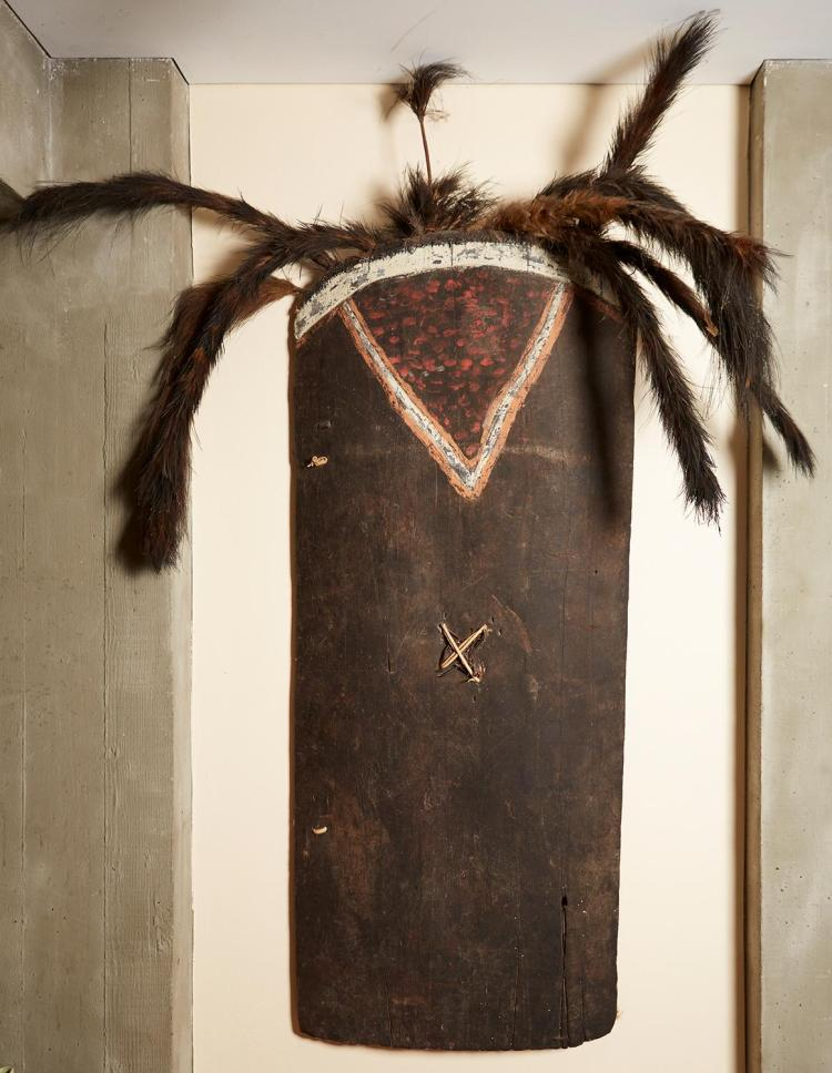 AN OLD WAR SHIELD, WESTERN HIGHLANDS, PAPUA NEW GUINEA