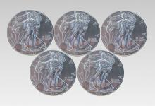 Twenty 2014 Uncirculated Silver Eagle Dollar Lot