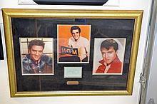 Framed Elvis Presley Signature w/ 3 8x10 Photos