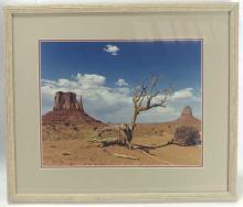 J. Bdo Desert Landscape Photo