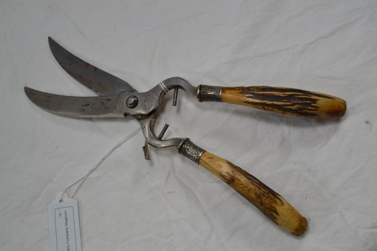 Royal Brand Solingen Cutlery Company Staghorn Sterling Ferrule Shears
