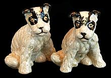 PAIR Asian Staffordshire Dogs