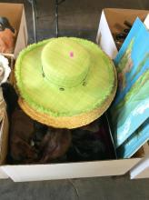 Hats, Scarf & Art Box Lot