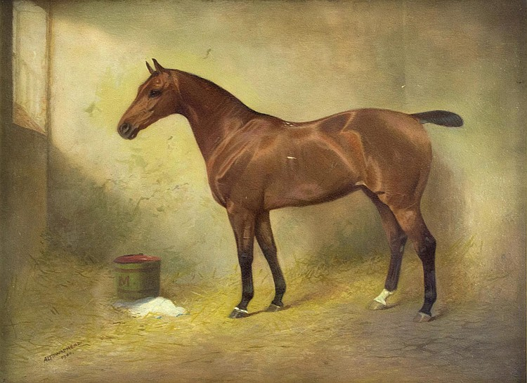 A.L. Townsend, 1900 Portrait of a Horse