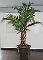 Decorative Fake Palm Tree, Approx. 10 Feet Tall.