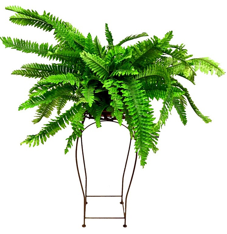 Artificial Plant & Metal Stand.