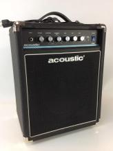 Acoustic Amplification B15 Bass Guitar Amp