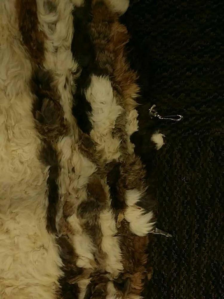 Xl Rabbit Fur Art Wall Hanger Rug