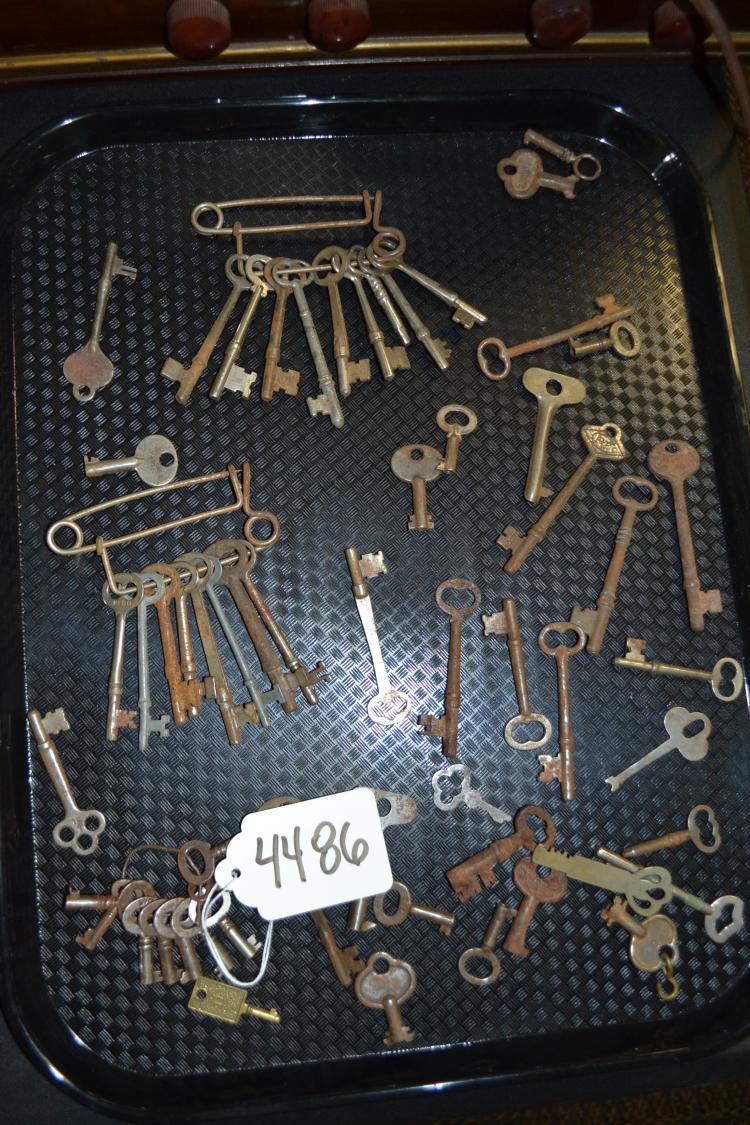 50 + Antique Skeleton Key Lot