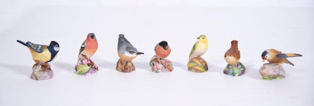 Seven Royal Worcester Bone China Bird Figurines