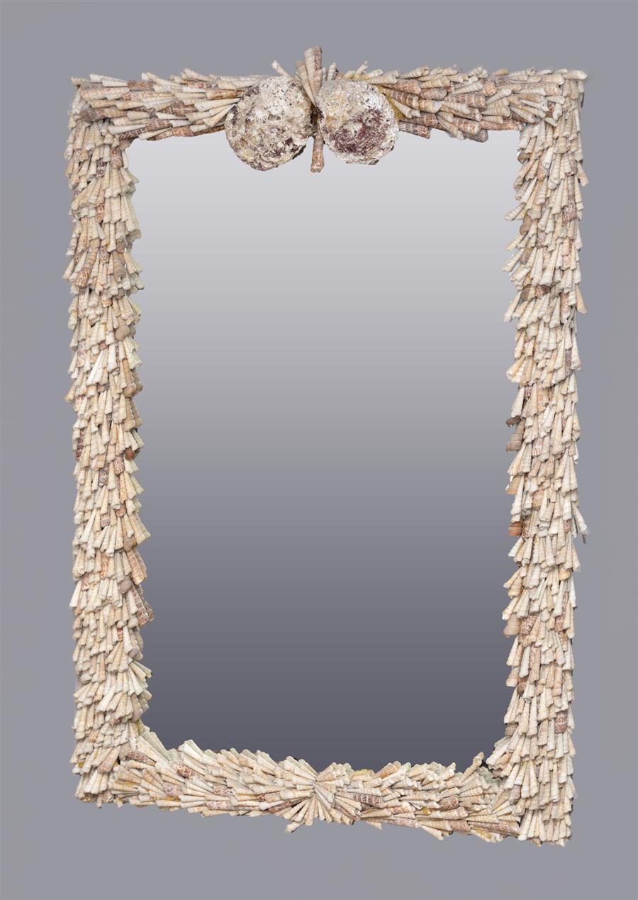 Nature Design Shells, Augur Mirror