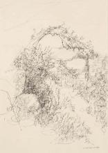 Jules CAVAILLES (Carmaux 1901 - Epineuil 1977) Végétation