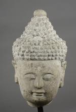 Tête de Buddha à la coiffure bouclée surmontée de l'ushnisha serti de deux joyaux Urna au centre des bouclettes et au milieu du front.