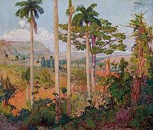 Cuban Landscape with Palm Trees