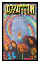 Led Zeppelin Signed Jeans