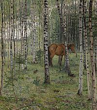 Horse in a Birch Grove