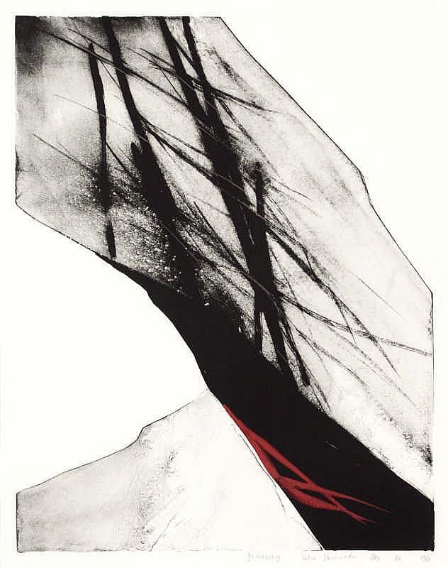 Toko Shinoda, Journey