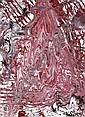 Yasuo Sumi, Rinka, Yasuo Sumi, Click for value