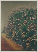 Large Scale (American, 20th c.) Horticultural Lithograph
