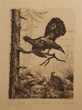 H. Frenz Pheasents etching
