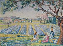 **Yvonne Canu 1921-2008 (French) The gathering of lavender oil on canvas