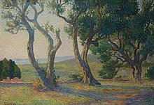 **Henri Person 1876-1926 (French) Olive trees in the morning oil on canvas