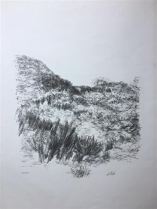 Anna Ticho 1894-1980 (Israeli) Gove of trees lithograph