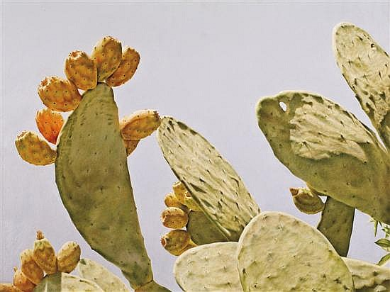 Natan Pernick b. 1980 Cactus, 2008 oil on canvas